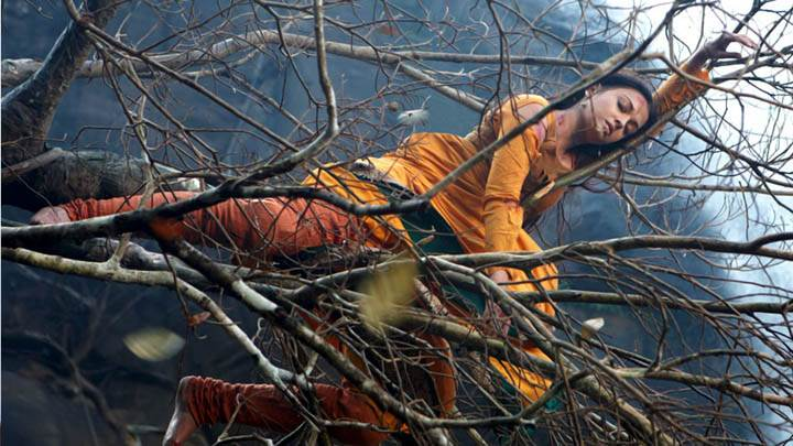 Aishwarya Rai Falls Onto A Tree Branch In Movie Raavan