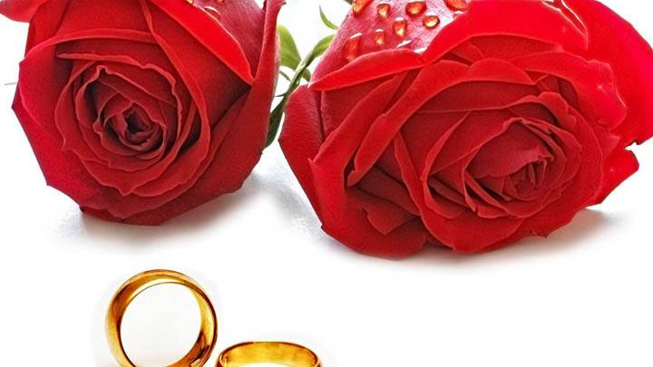 Red Roses And Golden Wedding Ring