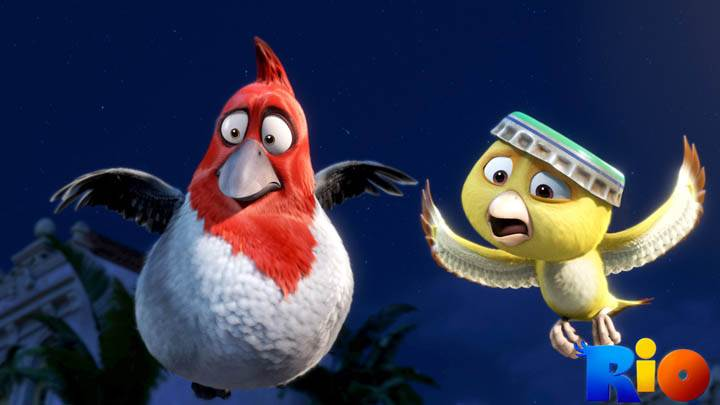 Flying Birds in Rio Movie
