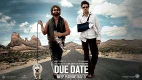 Robert Downey Jr. and Zach Galifianakis With Dog