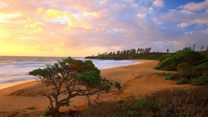 Donkey Beach, Kauai, Hawaii