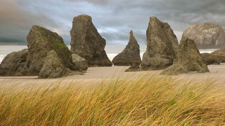 Dune Grass and Seastacks, Bandon, Oregon