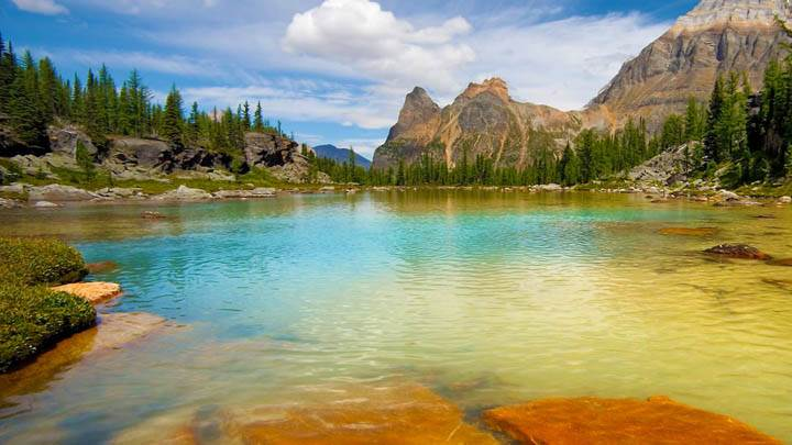 Opabin Terrace Pools, Yoho National Park, British Columbia, Canada