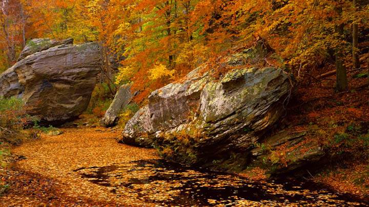 Smith Springs Recreation Area, Shawnee National Forest
