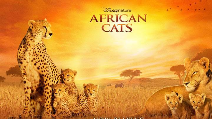 Disney African Cats Cover Poster