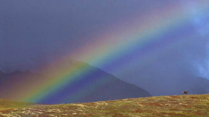 Rainbow Over the Arctic National Wildlife Refuge