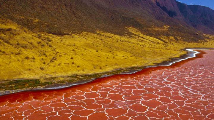 Soda Formations on the Surface of Lake Natron