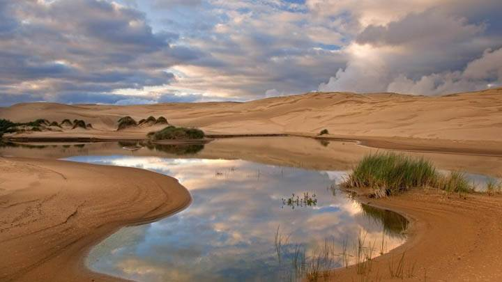 Umpqua Dunes, Siuslaw National Forest, Oregon