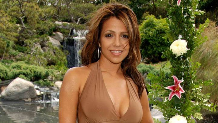 Vida Guerra Smiling Face Closeups In Brown Dress