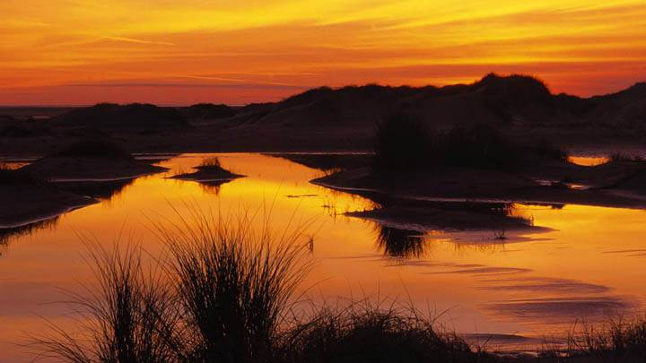 Wetland and Sand Dunes at Sunset