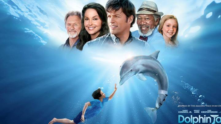 Dolphin Tale Movie Cover Poster
