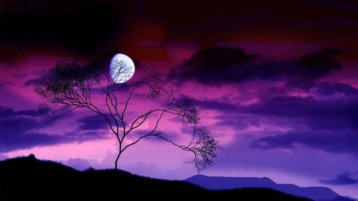 Colorful Night Scene With Moon