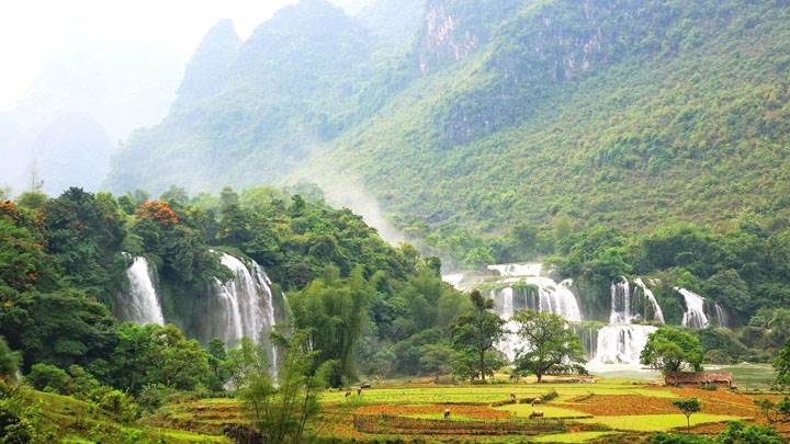 Detian Ban Gioc Falls Far View