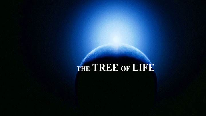 The Tree Of Life – A Life Journey