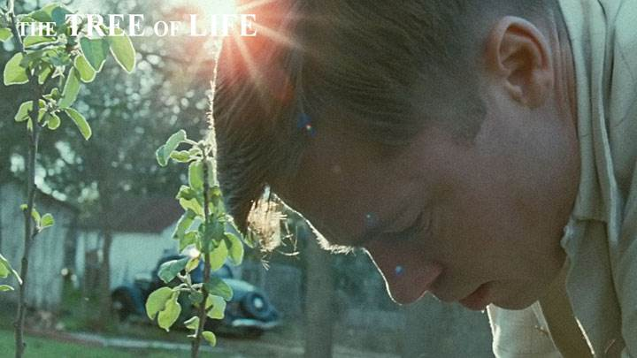 The Tree Of Life – Brad Pitt Side Face In Garden