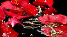 Wedding Rings With Red Rose And Water