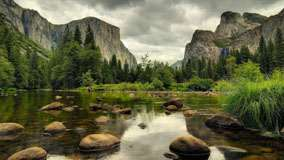 Yosemite National Park Nice Scene