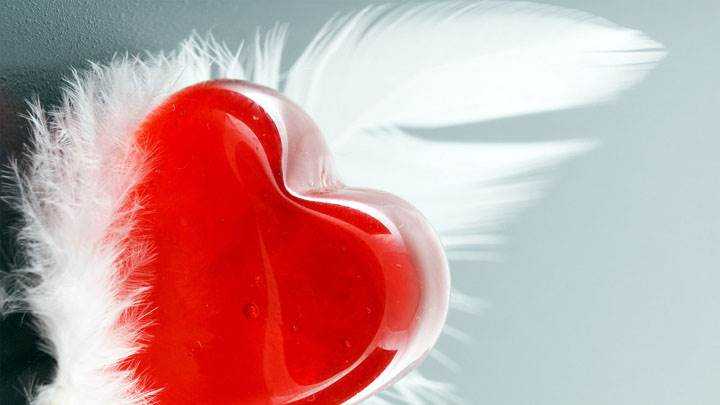 Feather And Red Heart