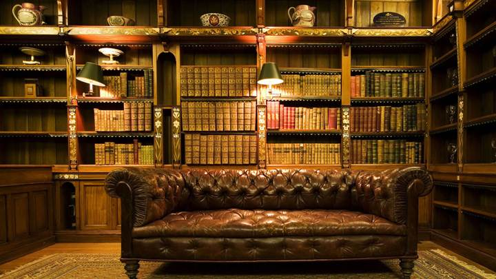 Beautiful Brown Sofa in Study Room