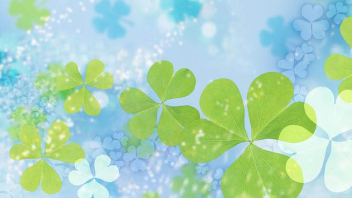Green Leaves On Cool Blue Background