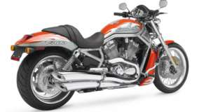 Orange Harley Davidson Vrscf V Rod Muscle Back Pose
