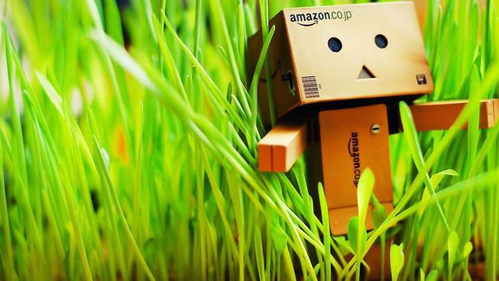 Amazon Box In Grass