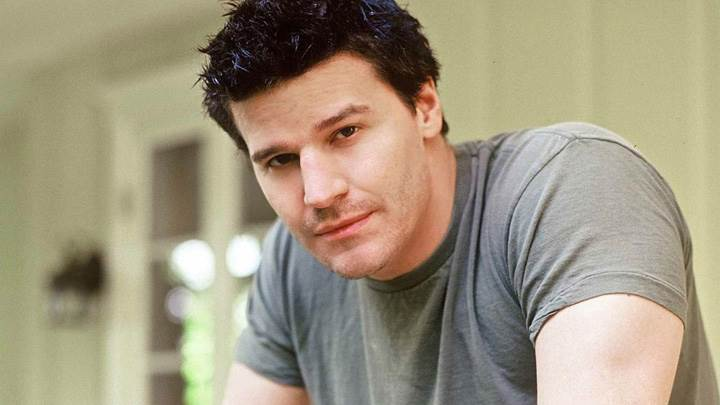 David Boreanaz Looking Front In Grey T-Shirt