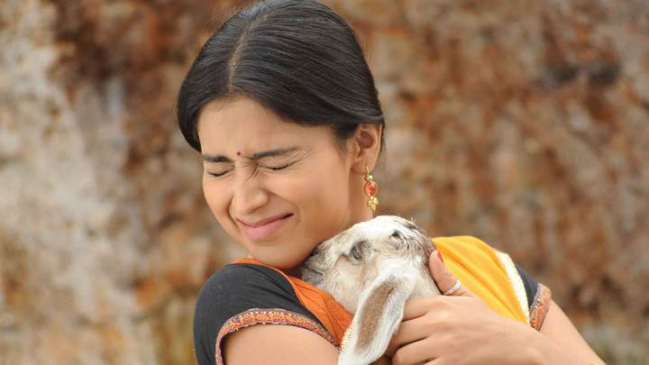 Shriya Saran Closed Eyes Hugging With Goat In Kutty Move