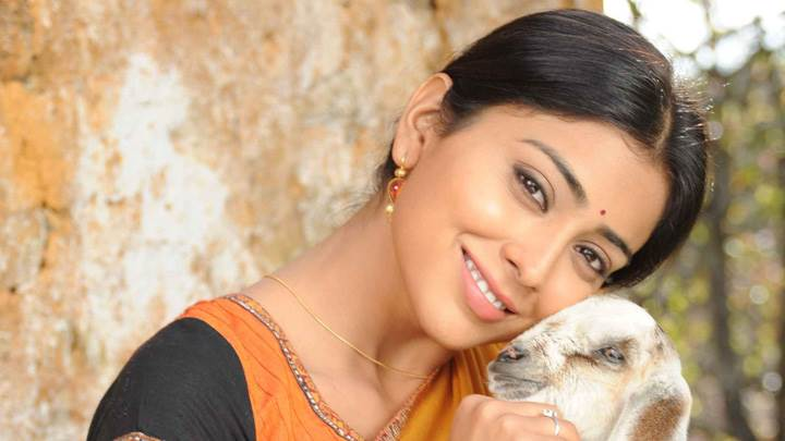 Shriya Saran Smiling With Goat Photoshoot In Kutty Movie