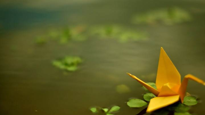 Yellow Origami Boat In Water