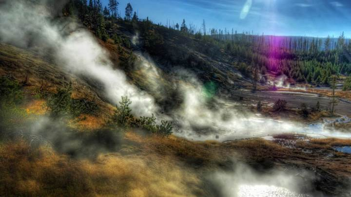 Yellowstone National Park Morning Fog