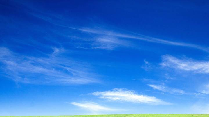 Blue Sky And Green Grass Morning Scene