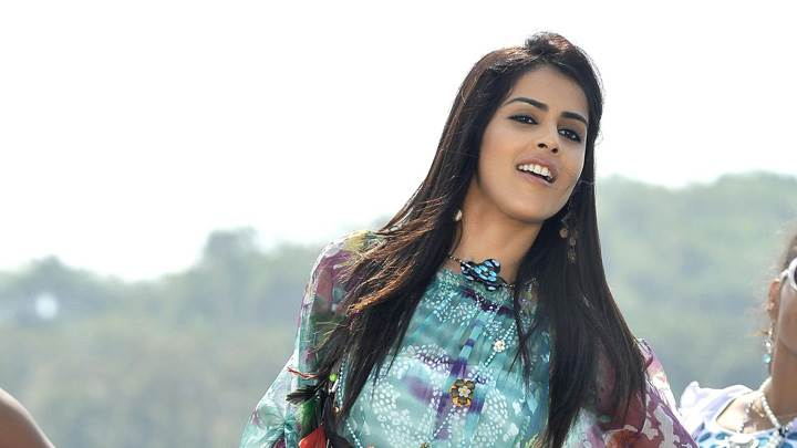 Genelia D'Souza In Colorful Top In Naa Ishtam