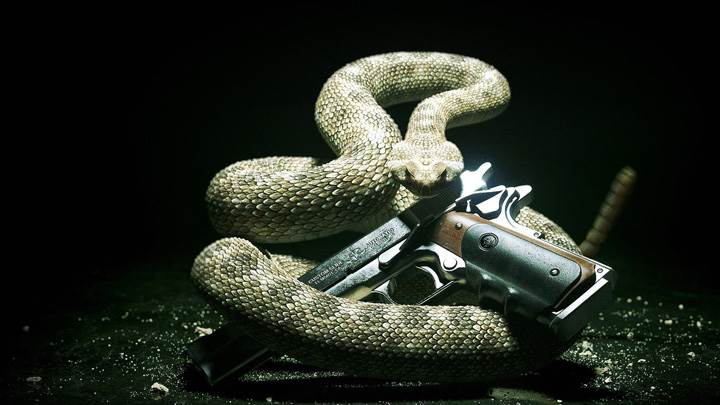 Hitman Absolution – Snake With A Gun