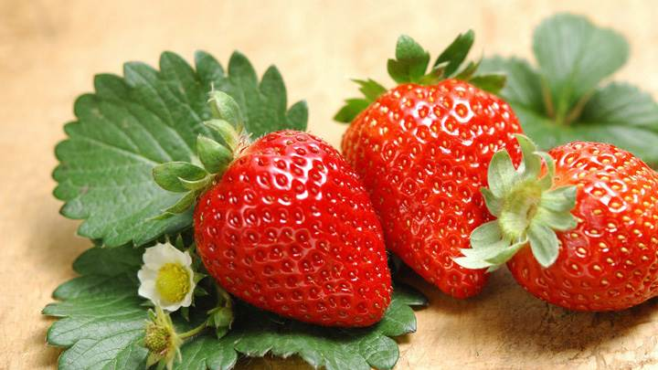 Strawberries With Green Leaves And Flowers