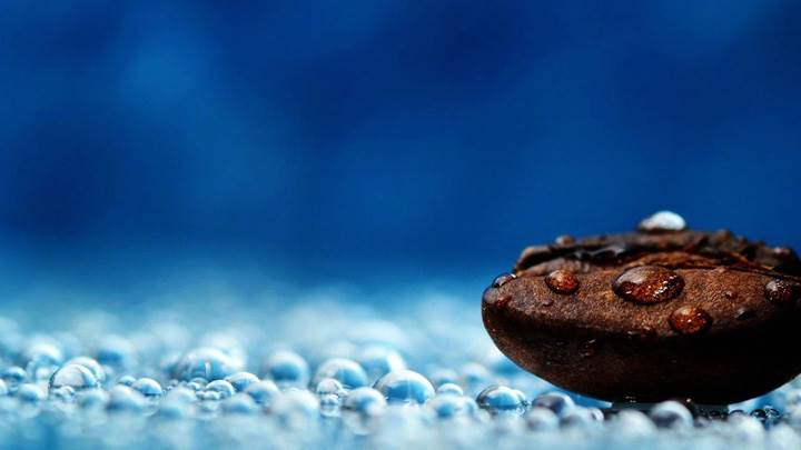 Water Drops On Coffee Bean And Blue Background