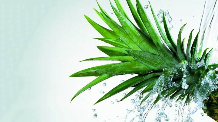 Water On Pine Apple