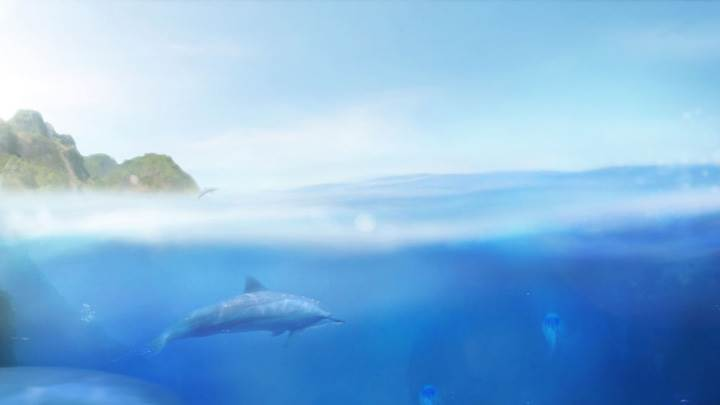 Dolphin In Sea Near Mountain
