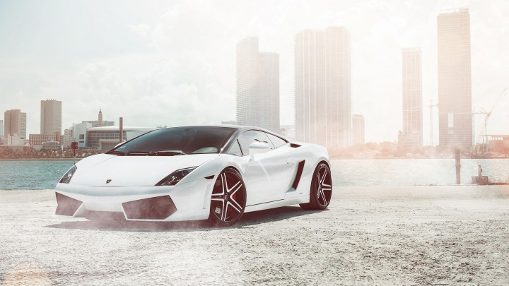 Lamborghini Gallardo Super Car In White Color